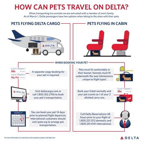 delta dogs delta offers options for pet travel delta news hub
