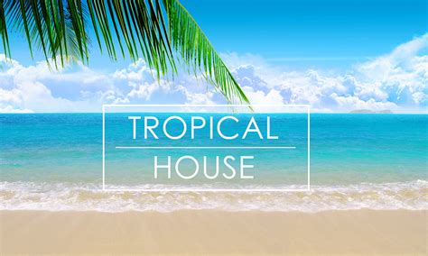 house music tips tips on producing tropical house blog splice