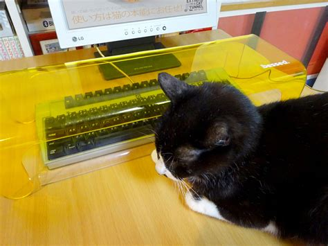 Cat Cover by Anti Cat Keyboard Cover The Green