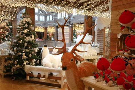 last minute christmas tree london s best shops for