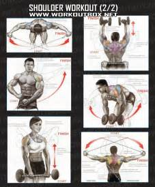 shoulder workout part 2 healthy fitness exercises