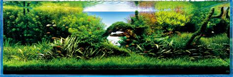 takashi amano aquascaping techniques ada nature aquarium 天野尚