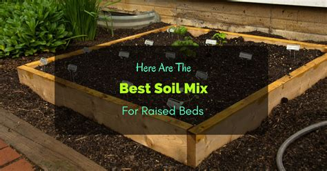 Here Are The Best Soil Mix For Raised Beds Raised Bed Soil Mix Vegetable Garden