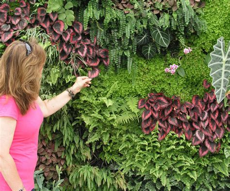 fazer plantas jardim vertical aprenda como fazer dicas e fotos