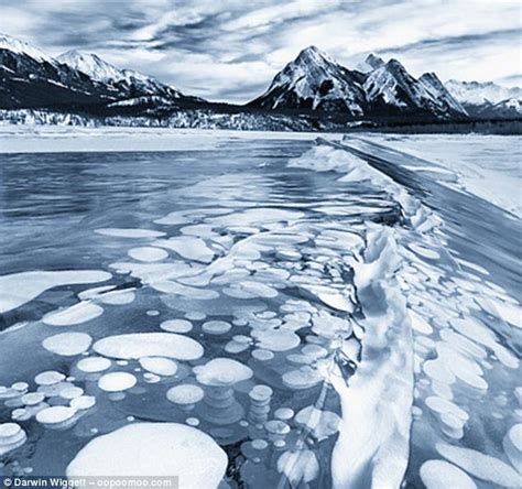 non flammable snow frost what bubbles beneath beautiful patterns of frozen bubbles trapped in canada lake are highly