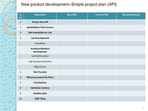 Project Management In Pharmaceutical Generic Industry Basics And Stan Product Development Plan Template