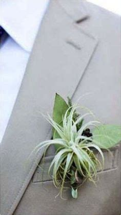 from boutonnieres to place settings some stunning exles of air plants as wedding decor