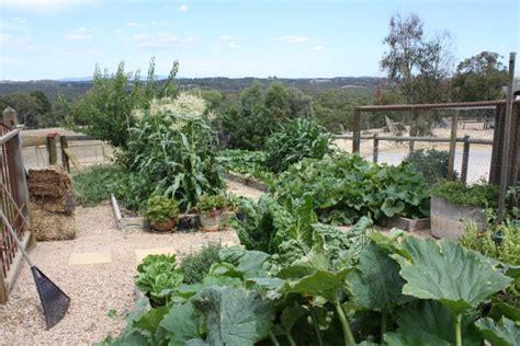 vegetable garden melbourne vegetable gardens by gardens