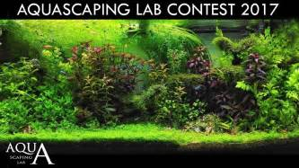 aquascaping contest aquascaping contest 2017 ranking and winner quot 2