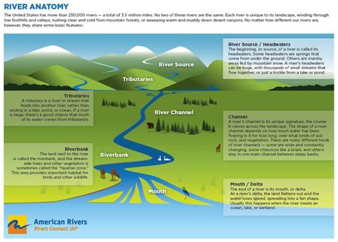 diagram of river river diagram showing the components of a river including