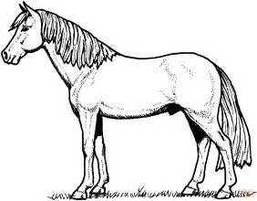 coloring pages of paint horses paint horses for adults printable coloring pages coloring