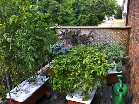 appartment garden young urban farmers residential gardens young urban farmers