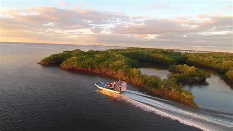 crystal river boat tours air boat tours on the nature coast with river ventures