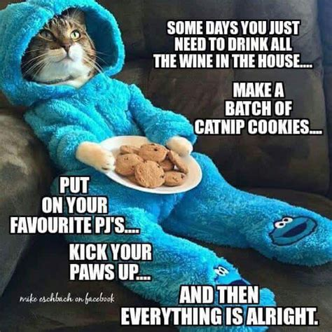 Cookie Meme - weigh day weekend and lifesaver gummies gypsyhip it s
