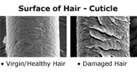 Types Of Damaged Hair by What S The Difference Between Hair And Remy Hair