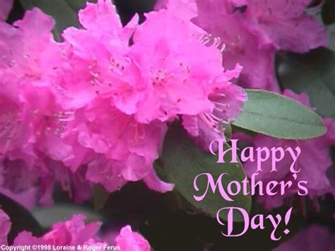 Mothers Day Images S Day Images S Day Hd Wallpaper And