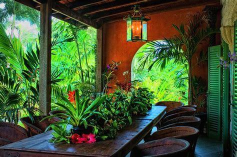 images  caribbean gardens  pinterest
