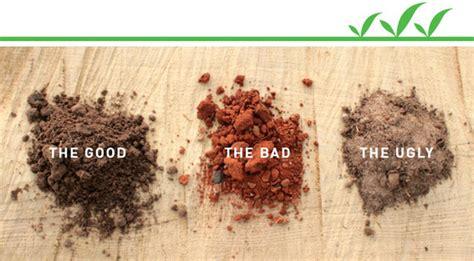 gartenboden gestalten vs bad soil how to prep soil for your garden curbly