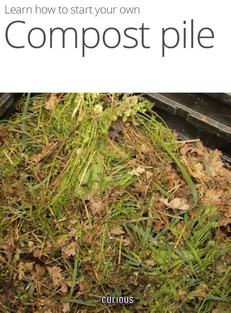 how to start your own compost pile outdoor therapy