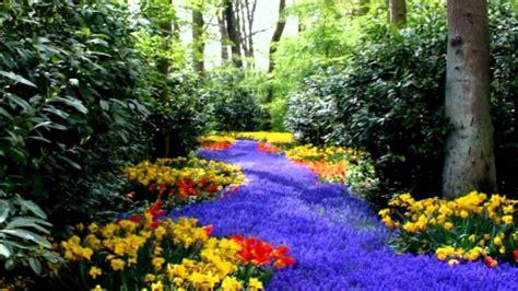 imagenes de jardines lindos paisajes hd de v 233 rtigo creative commons hd paola wmv