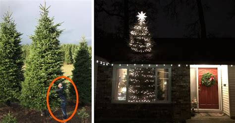 10 best places to get a christmas tree in us they bought a 20ft tree and found a brilliant way how to fit it inside bored panda