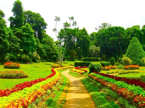 Botanical Garden Kandy 7 Places To Visit In Sri Lanka Holidayme