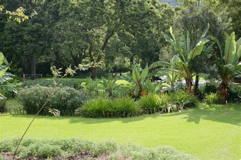 Walter Sisulu National Botanical Garden Pathway View Picture Of Walter Sisulu National Botanical Gardens Roodepoort Tripadvisor