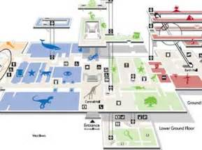 Natural History Museum Floor Plan by Pics For Gt Museum Floor Plan