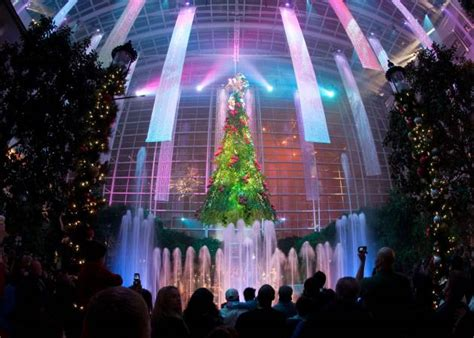 lighting of the christmas tree national harbor quot christmas on the potomac quot gaylord national harbor s