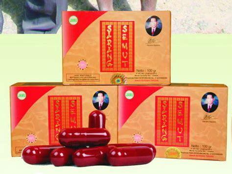 Sarang Semutteh Herbal Alami Papua sarang semut papua toko herbal terpercaya