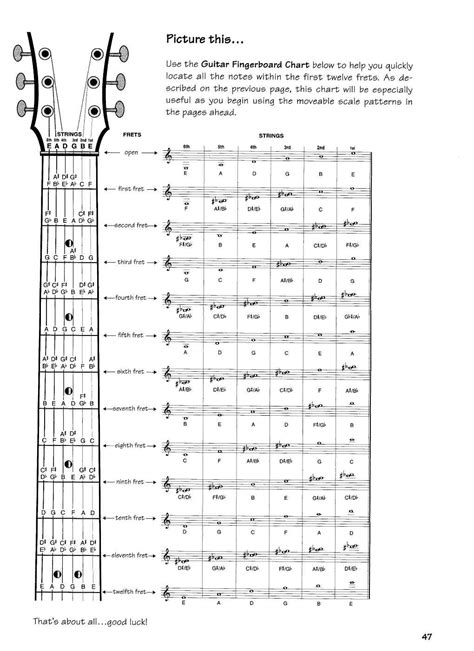 guitar notes diagram guitar note chart guitar