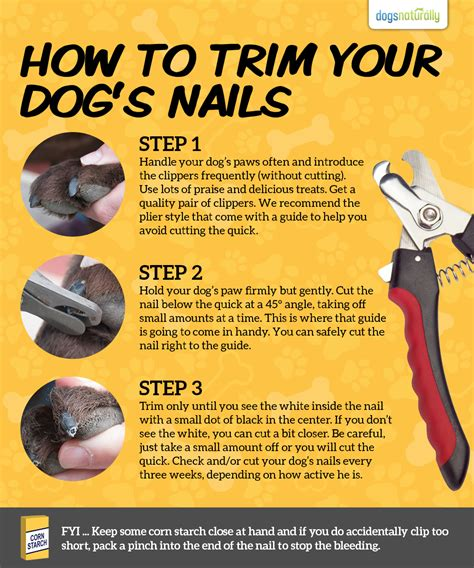 how to trim a s toenails a stress free way for trimming your s toenails