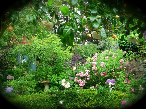Secret Flower Garden Secret Garden Images Didsbury Open Gardens News Secret Gardens Garden News