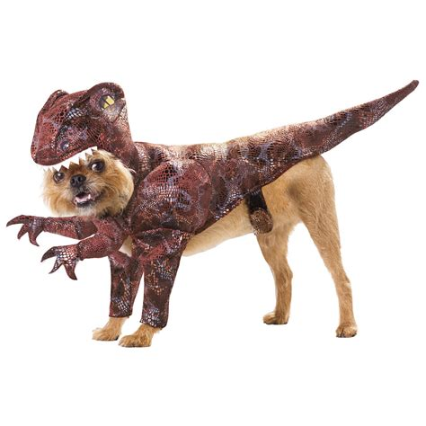 puppy costume animal planet raptor costume costume craze