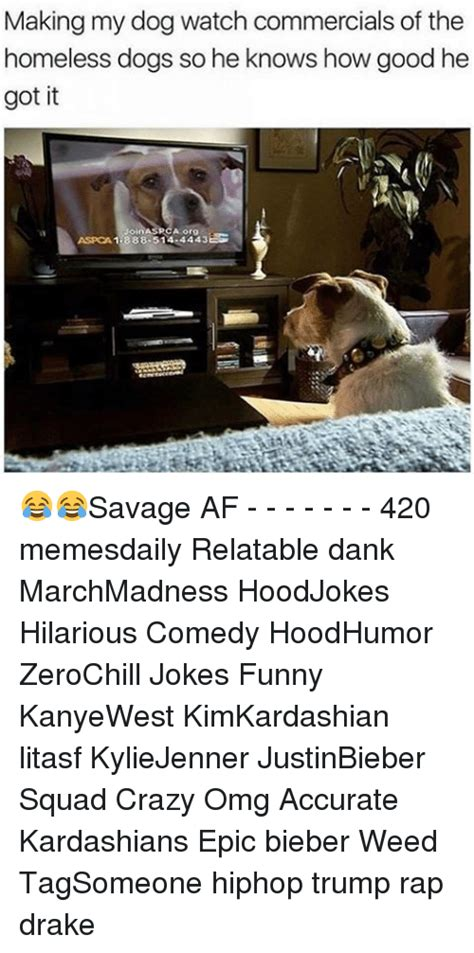 Aspca Meme - 25 best memes about aspca aspca memes