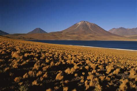 chile, altiplano, los flamencos national reserve, miscanti