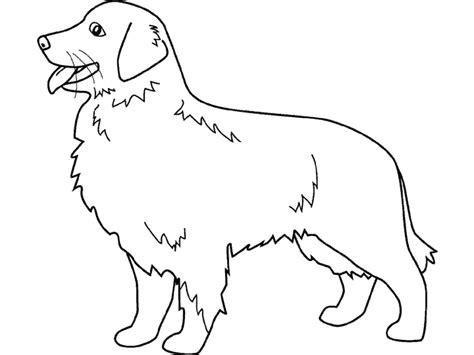 coloriage de chien de chasse