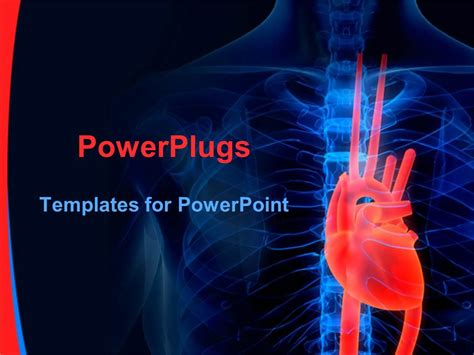 Powerpoint Template Blue Human Anatomy X Ray With Red Heart On Black Background Cardiology 20061 Cardiovascular Powerpoint Template Free