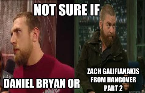 Zach Galifianakis Meme - not sure if daniel bryan or zach galifianakis from