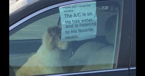 Dog In Car Meme - 19 funniest don t break the window memes smosh