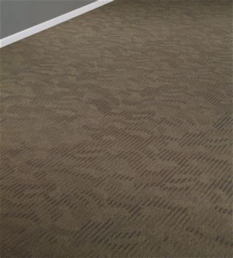Shaw Contract Flooring by No Collection Shaw Contract Commercial Carpet