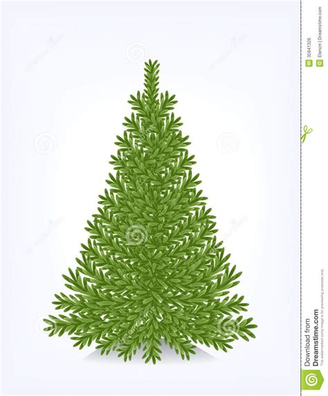 bushy christmas tree royalty free stock image image