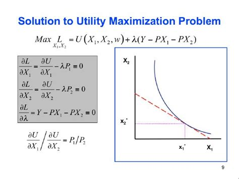 is utility maximized use the maximization definition what is