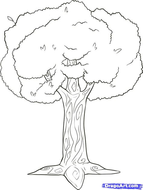 draw a tree how to draw branches step by step trees pop culture
