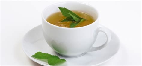 A Tastetea Reminder And Free Tea Offer by Peppermint Tea Health Benefits Tea Majesty
