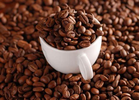 Coffee Bean coffee bean