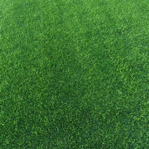 tappeto erboso a rotoli prezzi prato erboso a rotoli arredo giardino
