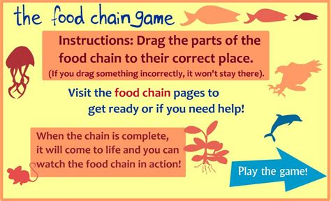 meaning of cadenas in english l angl 232 s a l escola splai food chain game 5th grade