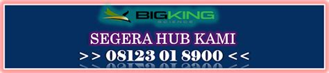 Harga Brainking Plus Nutrition brainking plus asli pt bigking science gt gt brainking plus