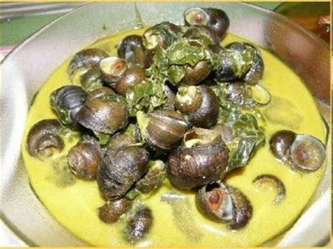 Kerang Gonggong common snails found in malaysia